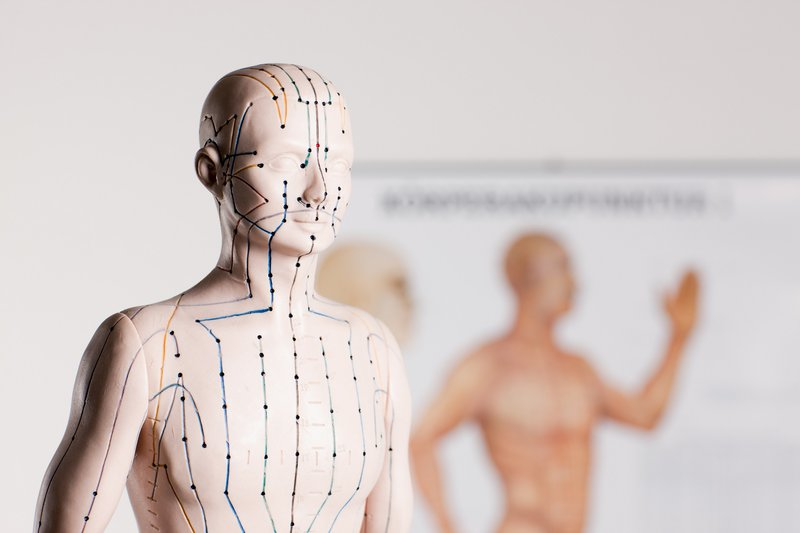 Canva - acupuncture model.jpg
